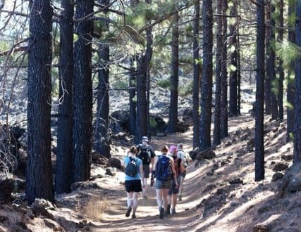 Walking holidays in Tenerife