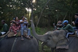 Best place for elephant rides in Nepal