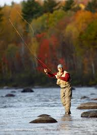 Trout fishing in Northern Maine