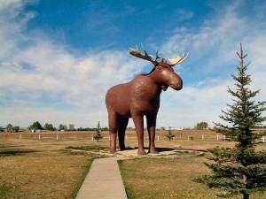 unusual things to see in Canada