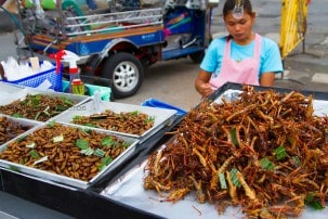 Your Guide to Eating Insects in Bangkok