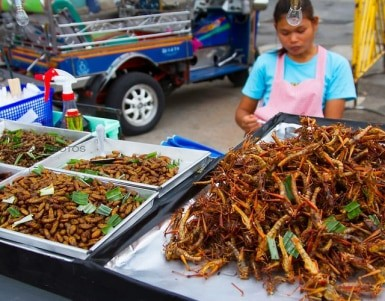 A Guide to Eating Insects in Thailand - Is it safe to eat insects? (videos)