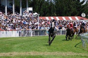 Summer activities and events in New Zealand