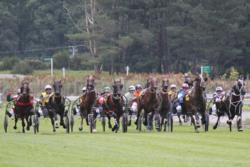 Summer events in New Zealand