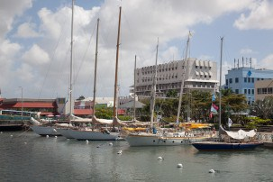 Guided tours of Barbados