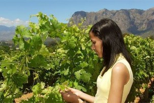 Responsible Tourism in South Africa