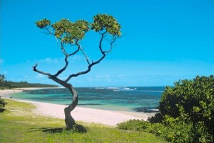 Is Mauritius the perfect island paradise for honeymooning couples?