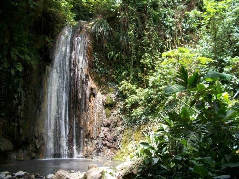 St Lucia rainforest tours