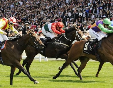 Royal Ascot best view of races