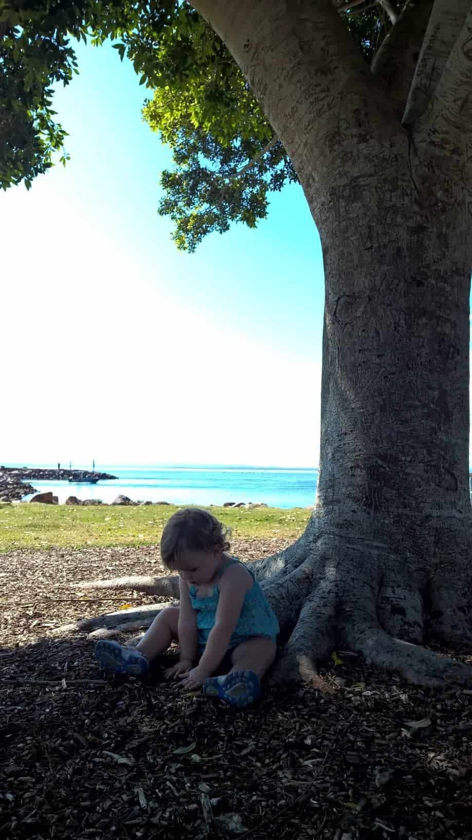 Under the tree at Nelson Bay