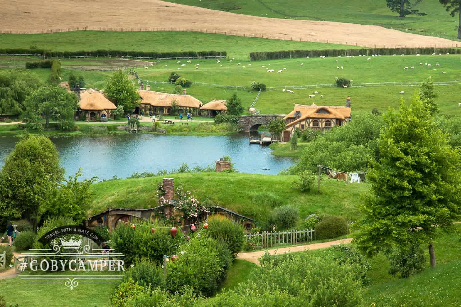 Review of Hobbiton movie set tour