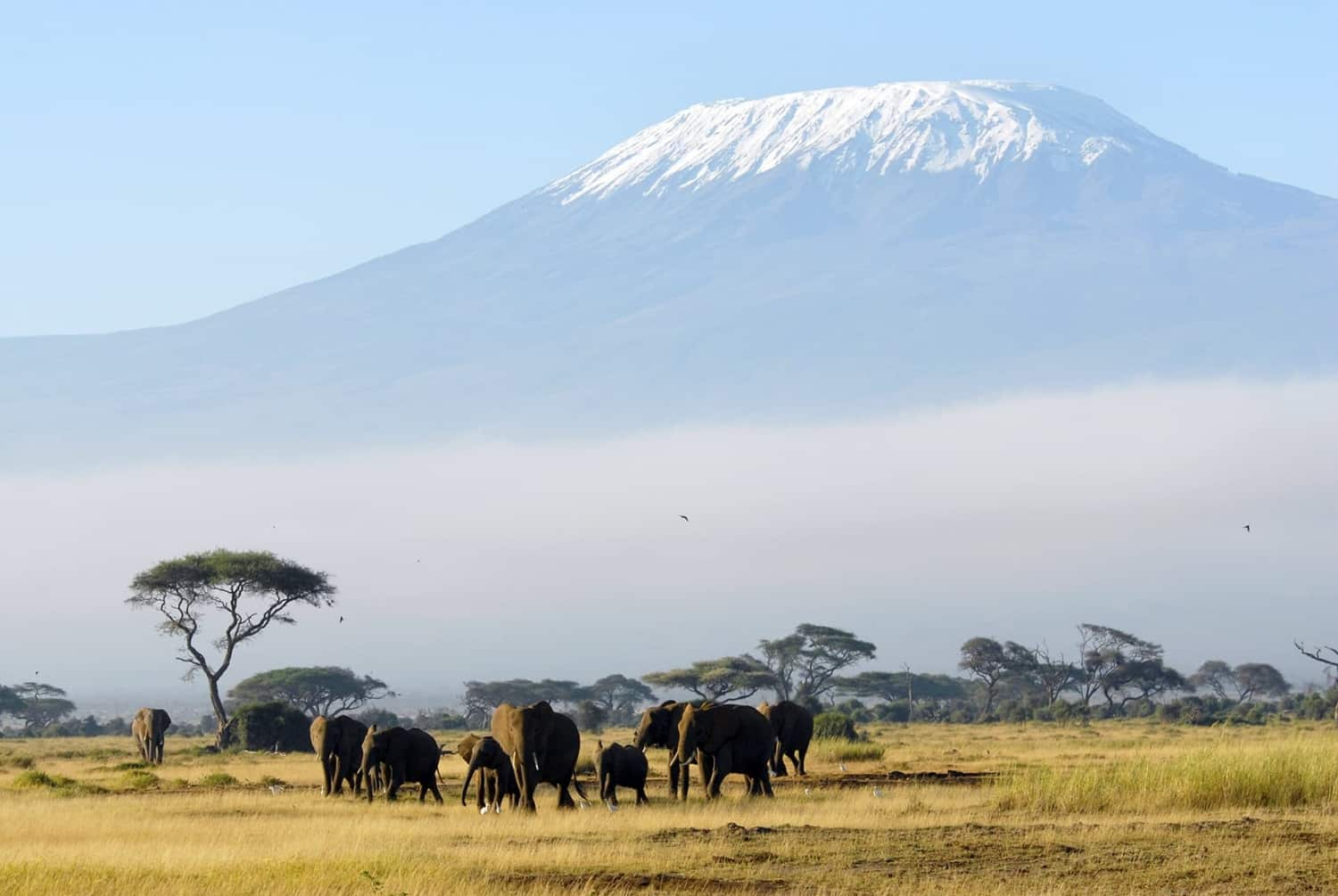 Best places to go in Africa