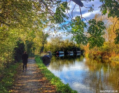 5 Beautiful Walks Close to London