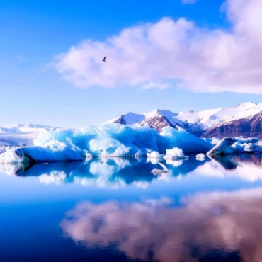 The Ultimate Bucket List For Seeing The Natural World