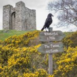 Game of Thrones Tour Of Northern Ireland